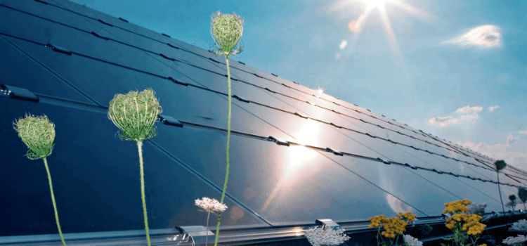 Investir dans le photovoltaïque : quelques conseils essentiels pour les investisseurs privés